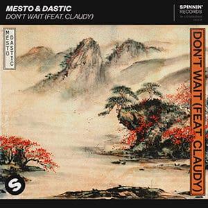 Mesto y Dastic - Don't Wait (feat Claudy) - julio 2021