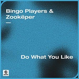 Bingo Players & Zookëper - Do What You Like - Pontik radio