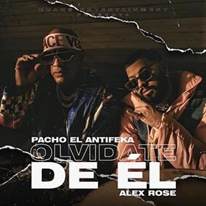"""Pacho el Antifeka – """"Olvídate de él"""" (feat Alex Rose) - Pontik radio"""